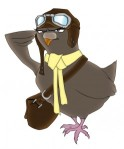 pigeon, twitterbird